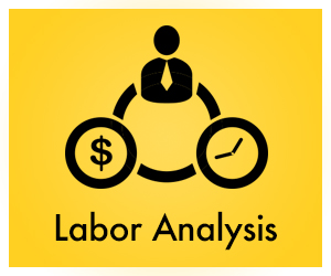 Labor Analysis